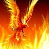 Protocol Phoenix