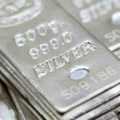 silverfox2261